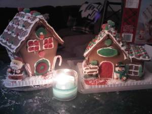 My gingerbread houses
