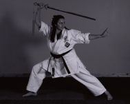 Go and teach a class or two at the dojo